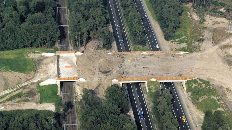 Luchtopname van de aanleg van het ecoduct bij Harderwijk. De verbinding biedt dieren een veilige oversteek van de A28 en de spoorlijn Nunspeet-Harderwijk. Beeld ANP