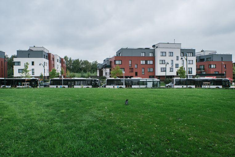 Bussen in Neder-Over-Heembeek. Het openbaar vervoer in Brussel is vandaag goed voor 26 procent van alle verplaatsingen. De auto haalt nog een derde. Beeld Wouter Van Vooren