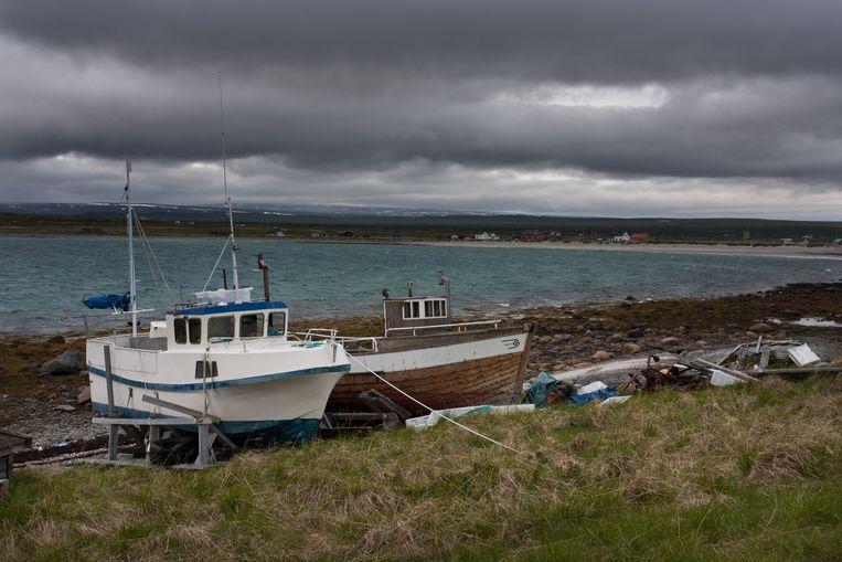 Bewoners van de kleine vissersgemeenschappen aan de Barentszzee verheugen zich al op de 'nieuwe goudmijn' die de sneeuwkrabben zullen zijn. Beeld Eric Fokke