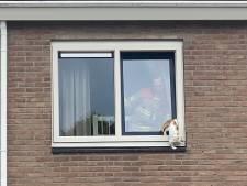 Na drama in Emmeloord zit er weer een kat vast in kantelraam, in Ermelo valt het letsel gelukkig mee