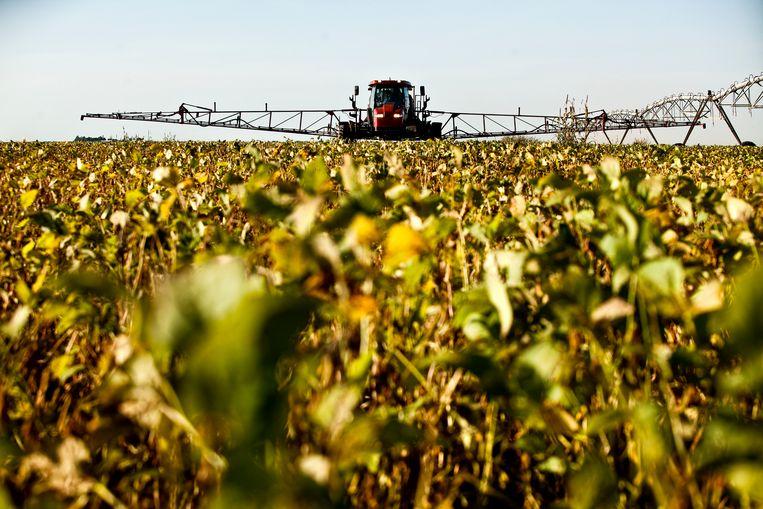 Een sojaplantage in de deelstaat Mato Grosso, Brazilië. Beeld Thinkstock