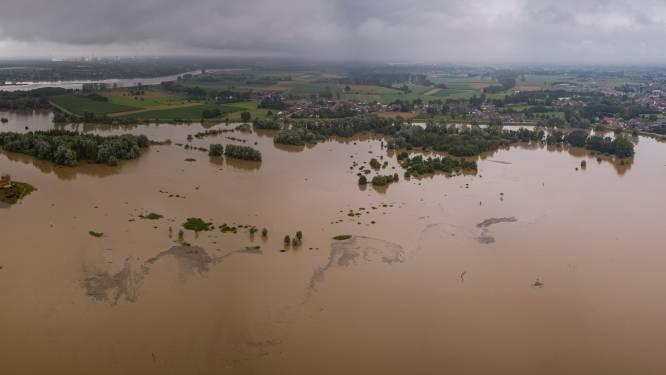 """REPORTAGE. Hoe het Maasland terug naar 1993 werd gekatapulteerd: """"Het gevecht van een muurtje tegen een woeste rivier"""""""