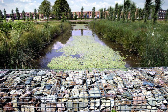 Het Westerpark, achter de Avans Hogeschool aan de Bossche Onderwijsboulevard.