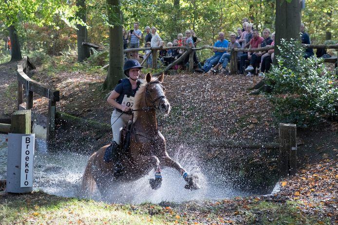 Bosscross Broekelo was tot dit jaar alleen een evenement voor paarden en ruiters. Nu mogen ook hardlopers over het parcours op landgoed Neppelenbroek.