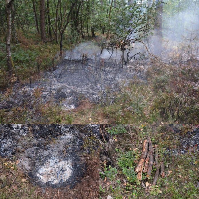 De restanten van het kampvuur dat tot de bosbrand leidde.