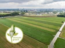 Utrecht hakt de knoop door: komende vijftien jaar geen enkel huis in polder Rijnenburg