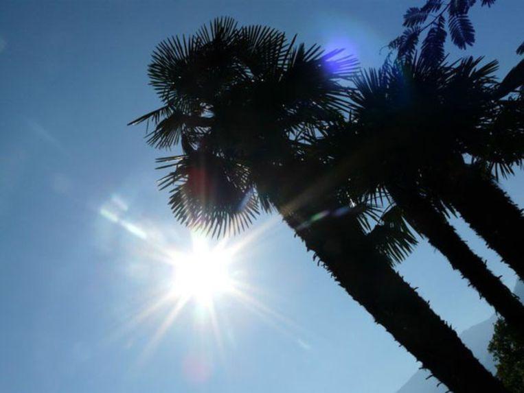 Locarno kent jaarlijks gemiddeld 2.300 uren zonneschijn. Beeld UNKNOWN