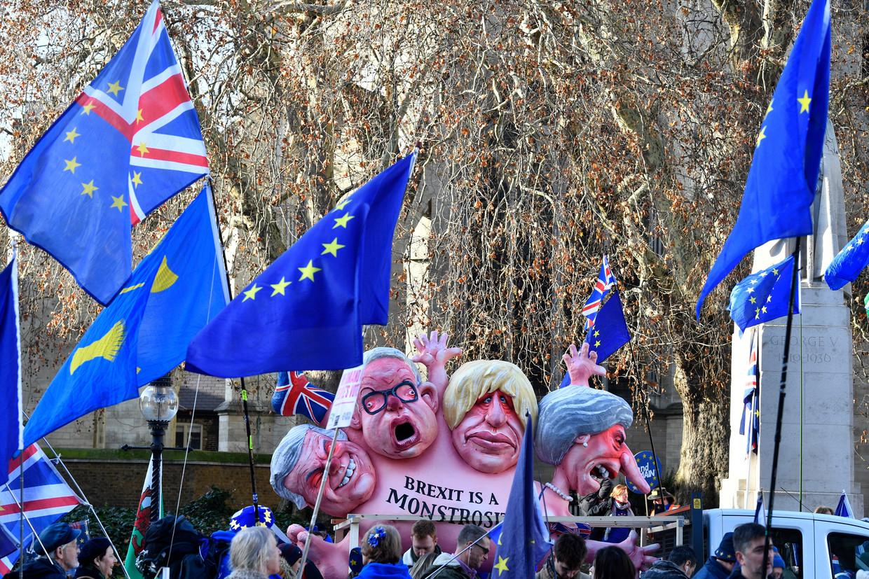 Een anti-Brexit protest in Londen.  Beeld EPA