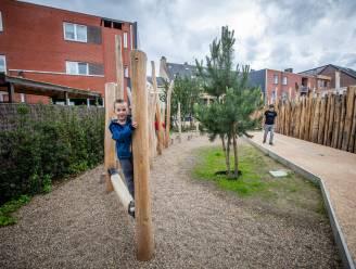 """Natuur in het stadscentrum dankzij 'Groene Doorsteek': """"In grote steden is dit al langer vanzelfsprekend"""""""