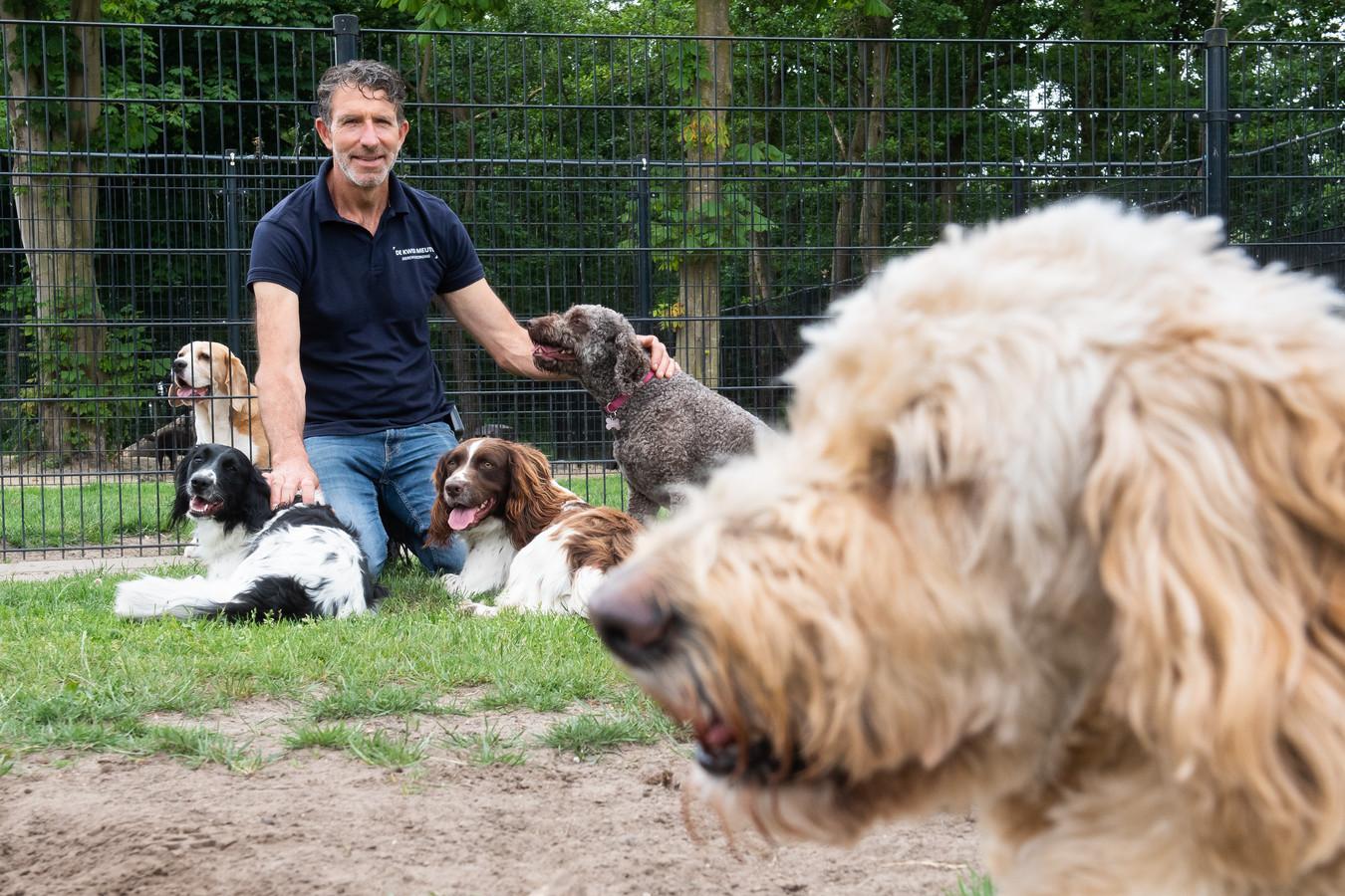 Drukte bij dierenpension Kweb Meute. Wiljan van den Broek met enkele van zijn gasten.