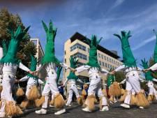 Il n'y aura pas de carnaval de Tilff en 2021