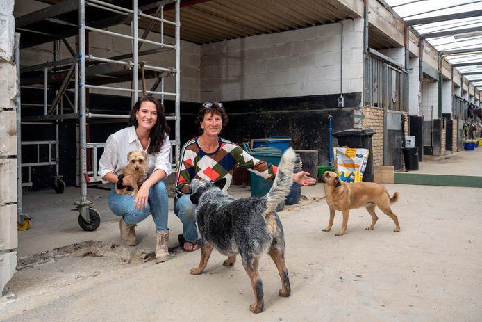 Anne-Sophie en Thérèse in de voormalige paardenstallen die worden verbouwd tot hondendagopvang. Foto: Gerard Burgers.