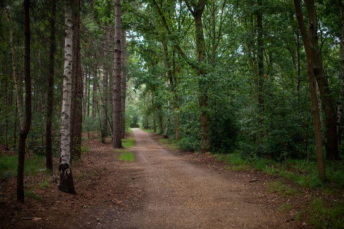 Het Elsenbos