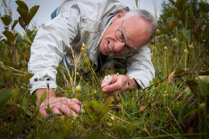 Jan Hendriks in het Hoge Broek met een bloeiende parnassia.