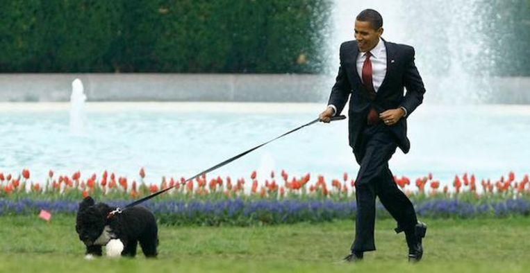 Groot verdriet voor de Obama's: