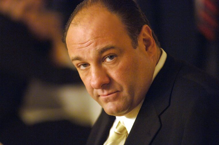 De in 2013 overleden James Gandolfini speelde een glansrol als Tony Soprano in de volgens velen 'beste serie ooit' The Sopranos (HBO). Beeld AP