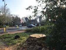 Gevaarlijke boom uit nood direct gekapt op de hoek Rillaersebaan en Tilburgseweg in Goirle