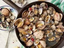 Zo maak je schelpen uit de pan met Napolitaanse kruiden