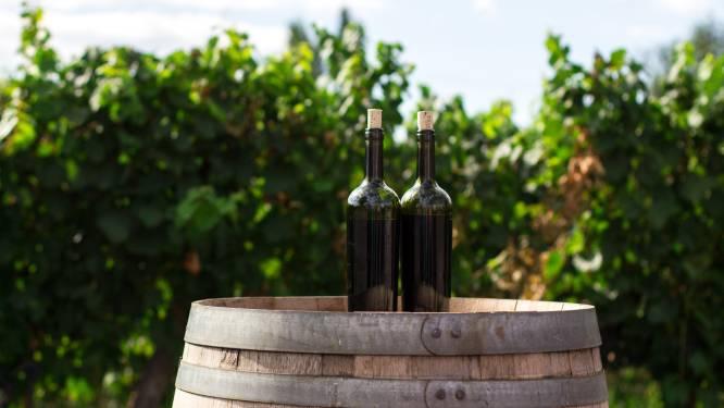Volle klas (én wachtlijst) voor SyntraPXL-opleiding 'Wijnmaker'
