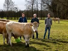 Bioboeren krijgen miljarden van Europa, maar het komt niet echt van de grond: 'Je bent een buitenbeentje'