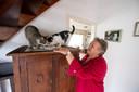 Dora Besten uit Haarle vangt al tientallen jaren katten op in haar woning aan de Molenweg.