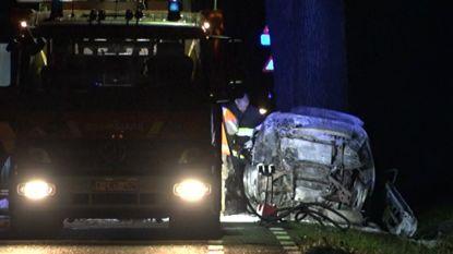 Bestuurder (26) komt om bij tragisch ongeval in Tessenderlo