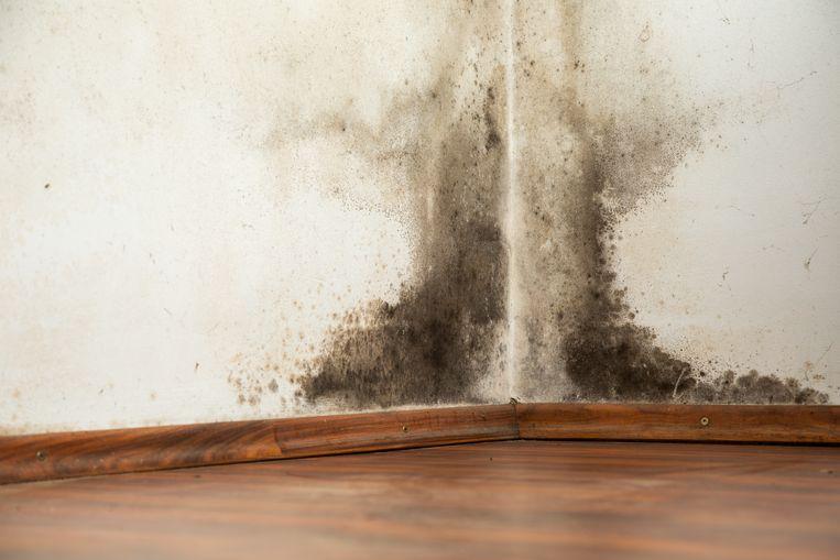 Aan de binnenkant van de woningen is nooit iets aan onderhoud gedaan waardoor die slecht geïsoleerd en te ventileren zijn, met schimmel als gevolg Beeld Getty Images/iStockphoto