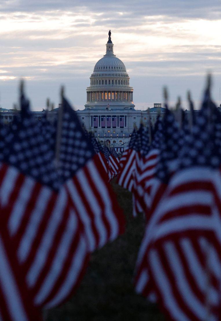 Duizenden Amerikaanse vlaggen zijn neergezet voor het Capitool in Washington DC als eerbetoon aan de Amerikanen die zijn overleden aan het coronavirus.  Beeld REUTERS