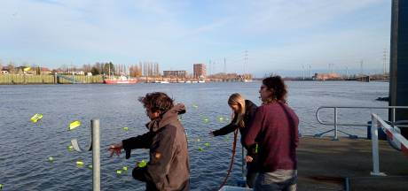 Alles voor de wetenschap: onderzoekers UAntwerpen gooien plastic in Schelde om oplossingen te vinden voor afvalprobleem