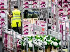 Vier verdachten opgepakt voor drugssmokkel in vrachtwagens met bloemen