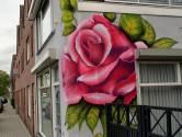 Dit is het verhaal achter die grote roos op het huis aan de Bredaseweg in Roosendaal