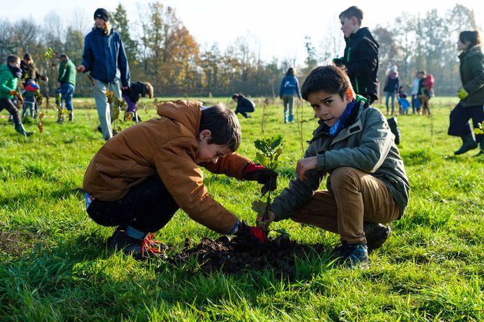 In Edegem gaven deze jongens al het goede voorbeeld door maar liefst 15.000 bomen te planten voor een nieuw klimaatbos.