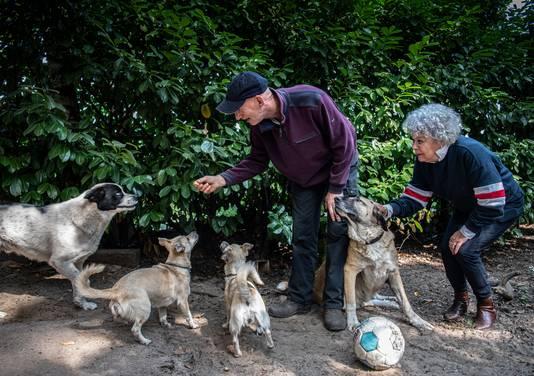 Petra Vergeer met Co en de vier honden van Rudi Lubbers.