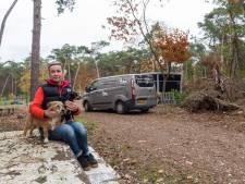 Nog meer klachten over hondenuitlaatservice in Nuenens bos: 'Steeds verdwijnt een stukje natuur'