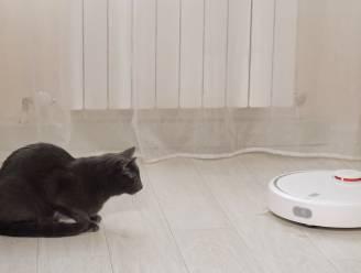 Een robotstofzuiger: handig toestel of iets dat snel weer in je kast belandt?