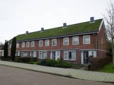 Casade valt in de prijzen met project Dakenstroom: daken vervangen met oog voor de natuur