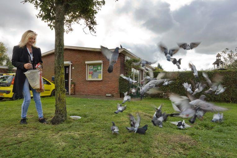 Hennie Hoogkamer voert de duiven die dagelijks massaal naar haar huis vliegen. Beeld otto snoek