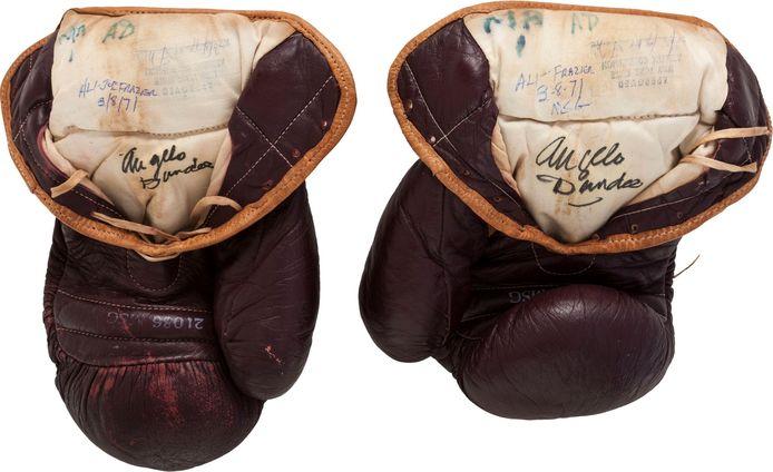 De bokshandschoenen van Ali.