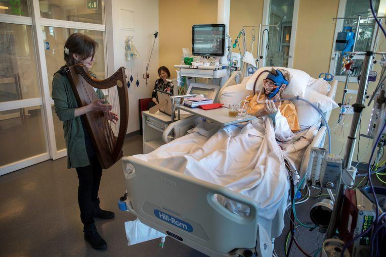 Muziek op de IC van het UMC Utrecht . Beeld Werry Crone