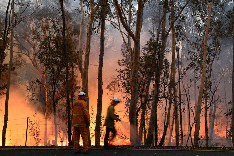 Brandweerlieden aan het werk in Central Coast, ten noorden van Sydney. Beeld AFP