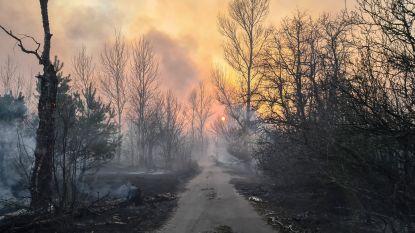 Na meer dan een maand: branden bij Tsjernobyl zijn geblust