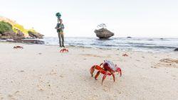 Krabbentrek op Christmaseiland te zien op Street View