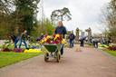 Kruiwagens vol bloemen en tientallen vrijwilligers voorzien elk graf van een bloem.
