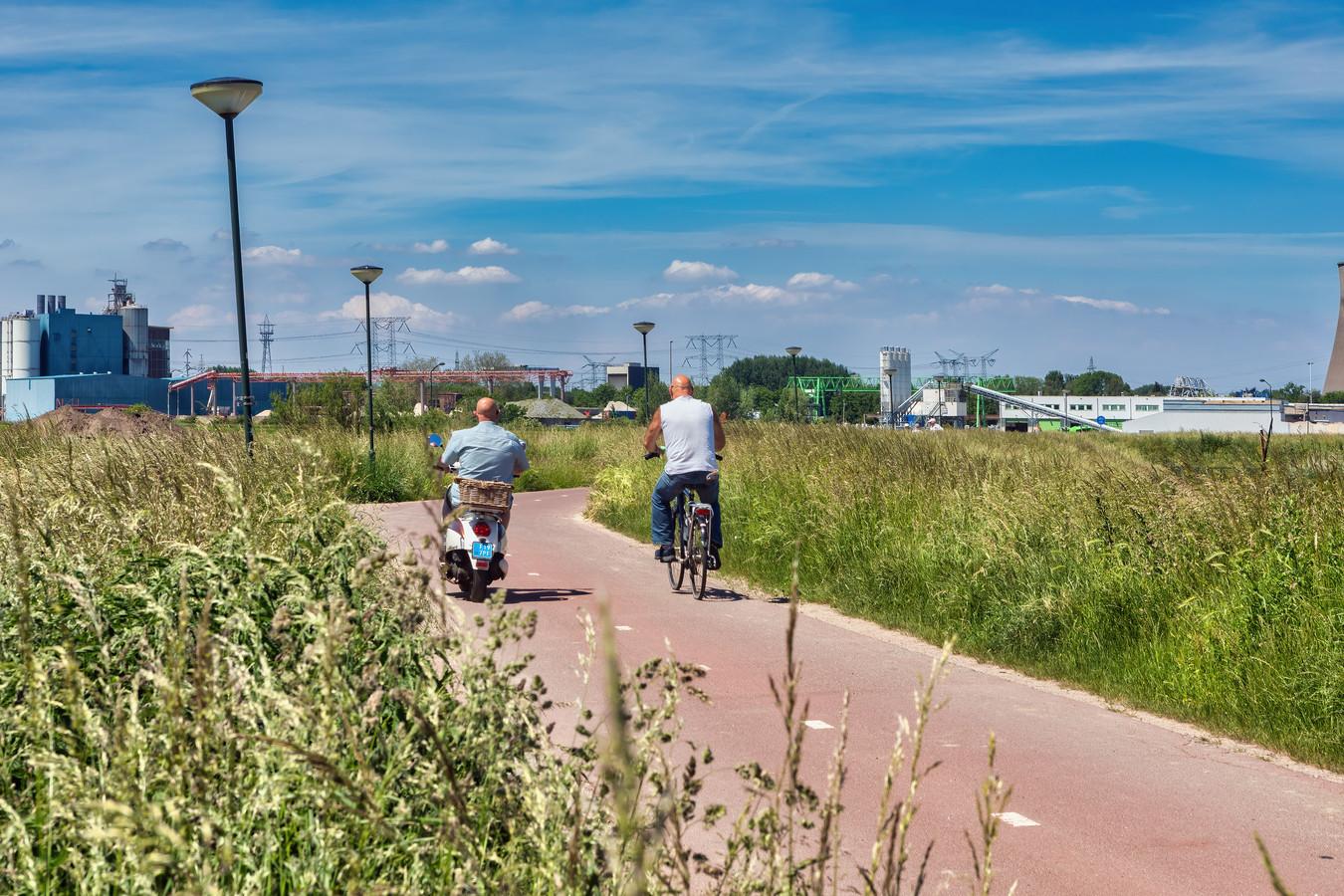 Gras op behoorlijke hoogte langs het fietspad, zoals hier op het fietspad tussen Raamsdonksveer en Geertruidenberg.
