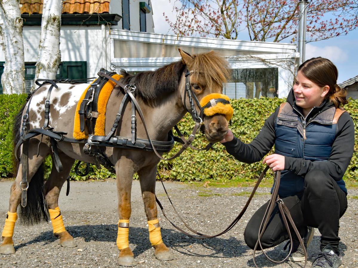 Minipaardje Sparky showt de accessoires van Yoni van Hooff uit Vogelwaarde. Ze gaan de hele wereld over.