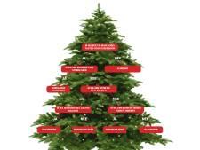 Echte kerstboom kopen? Lees dan eerst deze tips