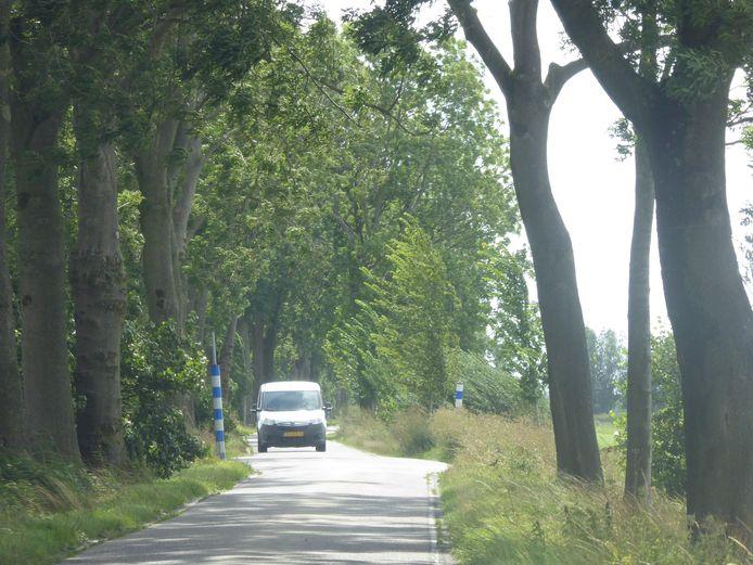 De Damweg tussen Lopik en Polsbroekerdam.