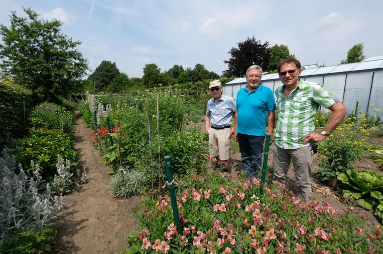 Louis Van den Vonder, Eddy Timmermans en Marc Van Praet zijn mannen met groene vingers.