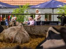 Steeds meer boeren doen er iets bij: 'Het moet wel een extraatje blijven, níet uit nood geboren zijn'