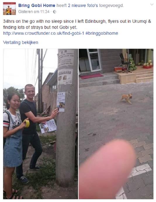 Facebook Bring Gobi Home